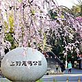∥ 2014 關東。橫濱 ∥ Super Hotel(上野御陡町),上野恩賜公園
