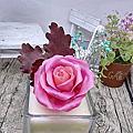 3d蜜蠟花