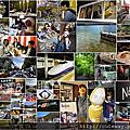 2014東京秋好玩