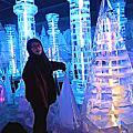 台北-零下18度C 冰花季之戀