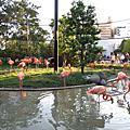 2007秋,重遊上野動物園