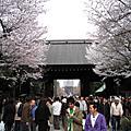 2008春,花見:千鳥之淵、靖國神社