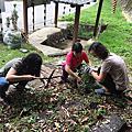 20170603真善美社區環境清潔
