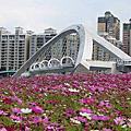 春天的陽光橋~
