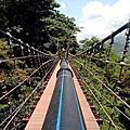 台中吊橋(一)21座