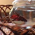 2013年5月8日 魚中魚水族館 紅色鬥魚 陪我拍照 紅豆(鬥)