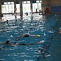 101游泳自救能力研習營