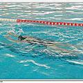 99年彰南體驗游泳營(第四梯次)