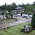 日本day4: 奈良可愛基咖桑
