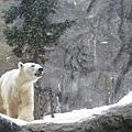20101223。旭山動物園