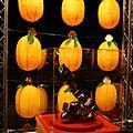 補2009台灣燈會照片
