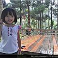第12露皇后鎮森林