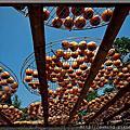 2011-09-18-柿餅