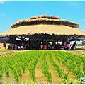 2019桃園農業博覽會-米的集會所