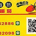 嘉義盈錩蕃茄有機農場