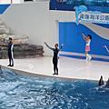 071012 花蓮海洋公園-海豚秀