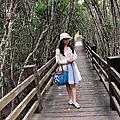 新竹.新豐紅樹林+桃園慈湖+苗栗七里玫瑰森林