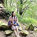 玉山國家公園-特富野古道+塔塔加