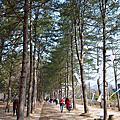 Korea Trip Day3 ♥
