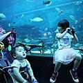 2017/9/5 S.E.A Aquarium