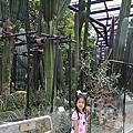 2017/9/6 Flower Dome, Children's Garden