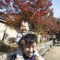 2017/11/11-19 有馬溫泉,京都賞楓