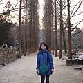 韓國5日遊