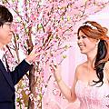 緯哲&雅琪結婚之囍@斗六海村