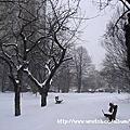 布拉格之冬