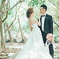 網路蒐集喜歡的婚紗照