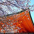 2011人間四月天˙京都賞櫻樂遊-嵐山嵯峨野、平安神宮篇
