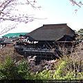 2011人間四月天˙京都賞櫻樂遊-清水寺、三年坂、二年坂篇