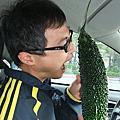2009/11/29金龍湖