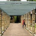 Botanic Garden01