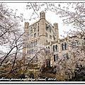 首爾慶熙大學