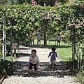 2010/09/26 三峽‧皇后鎮森林