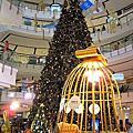 聖誕樹2009