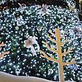 聖誕隨意拍2009