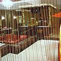 七星級精品旅館