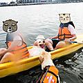 【菊島夏之旅】D2獨木舟