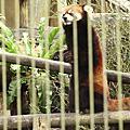 台北行天宮和台北木柵動物園