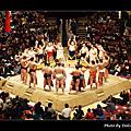 2010 大相撲