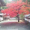 《日本打工》2012.11.05~11.08-第210天~第213天