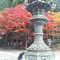 《日本打工》2012.11.09~11.13-第214天~第218天