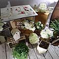 Pure Manor(屏東 晶滿餐廳)婚禮顧問 婚禮佈置 朵兒婚禮派對設計