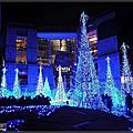 2015東京聖誕遊1