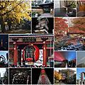 1130-1207東京/伊豆行