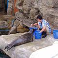 2005-06-30_屌車日記之花蓮海洋公園