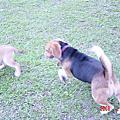 2006-02-05_とも的第一次出遊