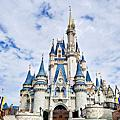 190123&0201 Magic Kingdom.